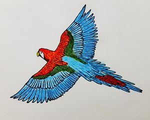 scarlet macaw   array of colours - Amitava0112
