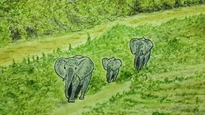 Elephants move on in Afican Jungle
