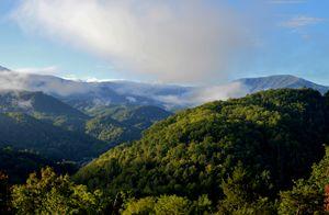 Smoky Mountains Landscape