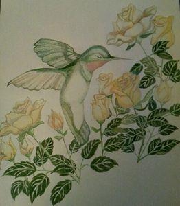 Yellow Rose Hummingbird