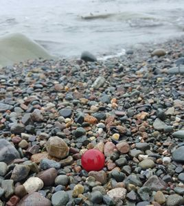 Red Sea Glass Marble On The Seashore