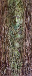 Sequoia / Ahuehuete Tree