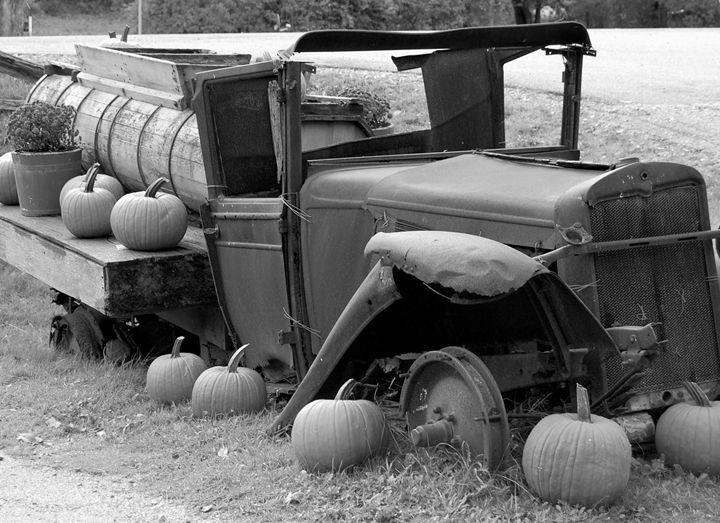 Pumpkin Season - tiffanycassanophotography