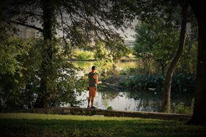 Fishing Lady Bird