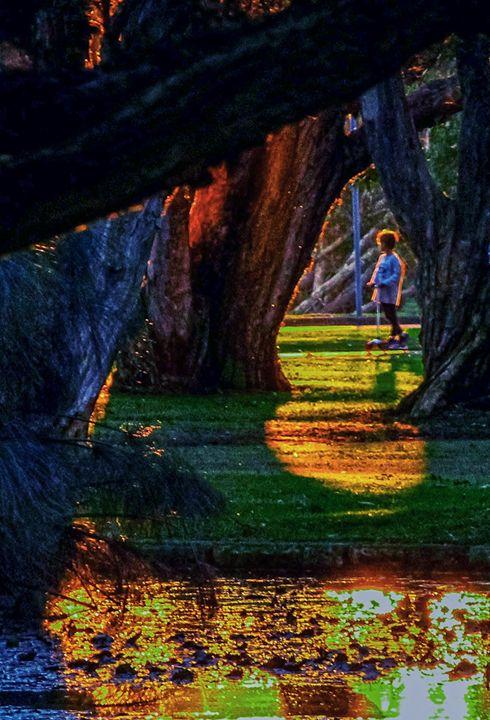 sunset at park - A Vision