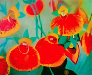 Slipper flowers