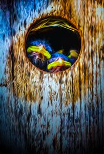 The Lookouts - Joe Campbell's Photo Art Gallery