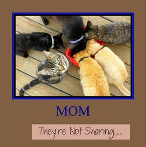 Not Sharing...