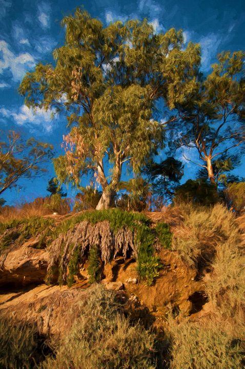 Tree too me - Zeitlin Gallery
