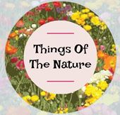 Things Of The Nature