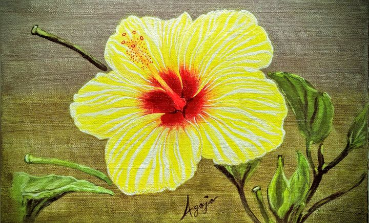 Yellow Hibiscus - Agojo art