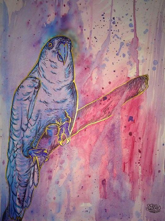 Parrot Dream - Liberty Wings