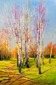 Birch trees on a Sunny spring day