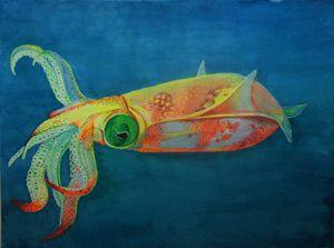 Fantastical Squid