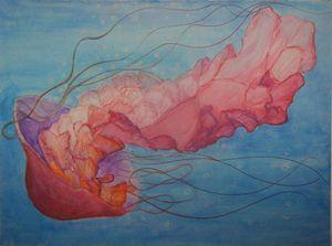 Jellyfish Dive