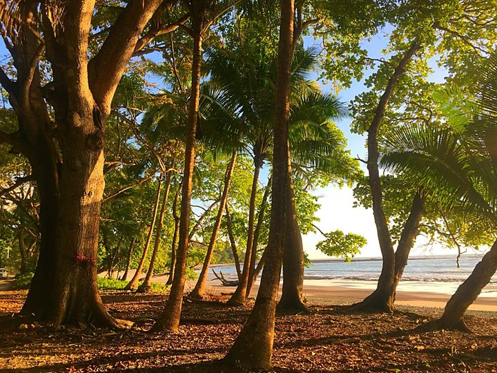 Playa Manzanillo - Ann Smith