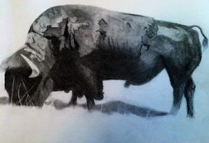The Busy Bison - A. Tohinaka