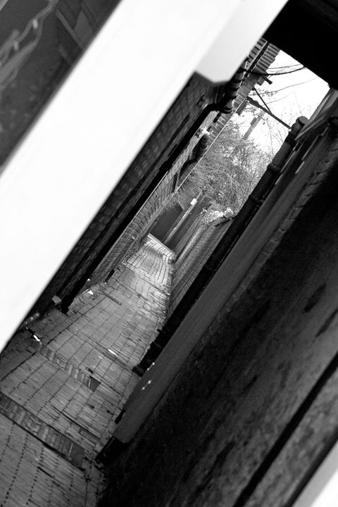 The Alley - Mistynet Photography