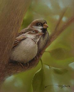 Sparrows in Love - Rozller
