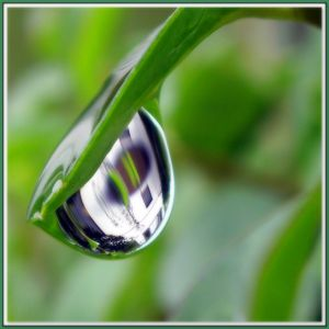 one house seen in one raindrop