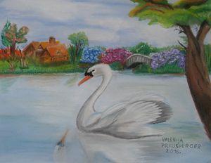 Swan on magical lake