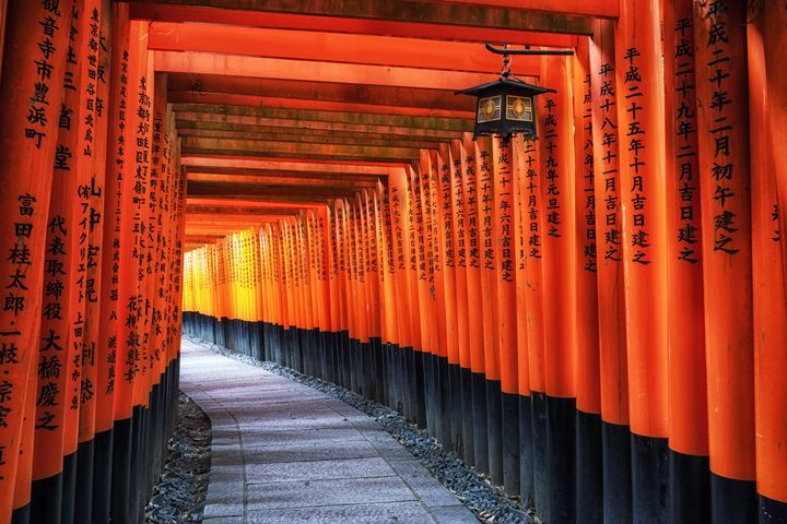 The Inari Gates - Aaron Choi Photography