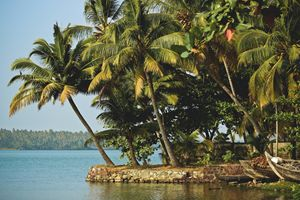 Tropical India