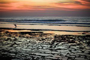 Sunset Wanderer