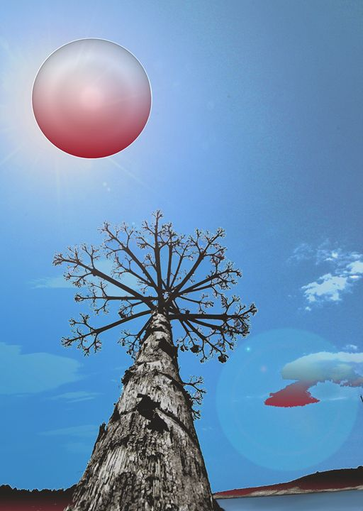 Melnacholia planet and agave tree - Adriatic picture factory