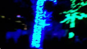 Blue Insomnia