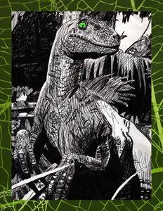 65 Million Year Old Gaze- Green Eyes - The Studio