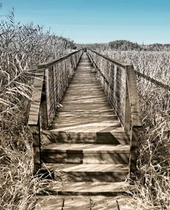 The bridge to elsewhere