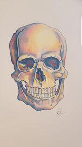 Coloured skull