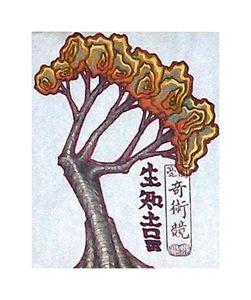 The burning tree.