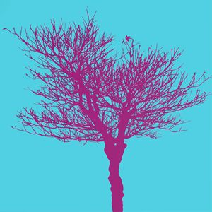 dead tree purple
