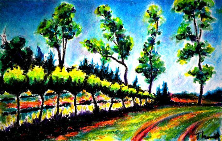 English Estates Vineyard - Greg Thweatt