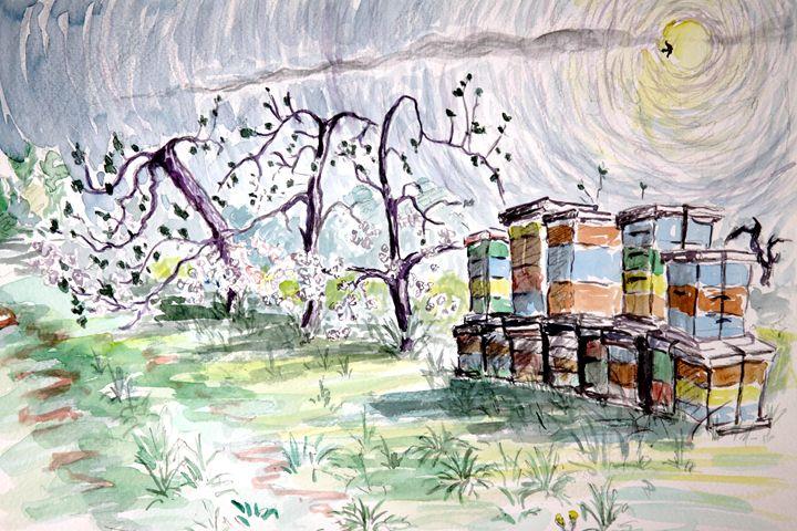 Bee Hives 1 - Greg Thweatt