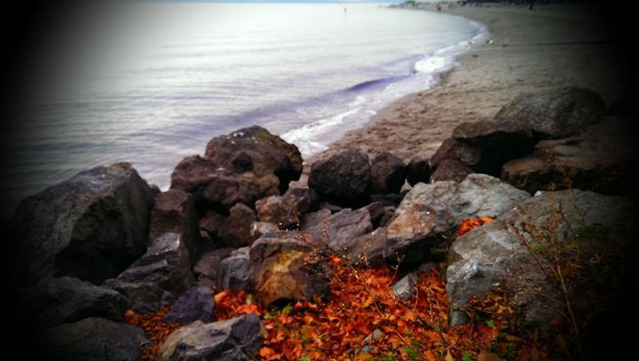Fall Upon the Beach - D.C. Burzo