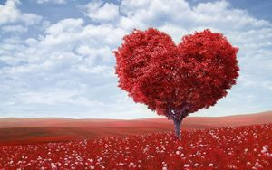 Yet Another Heart-Shaped Tree.