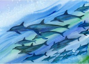 Dolphins Watercolour Painting
