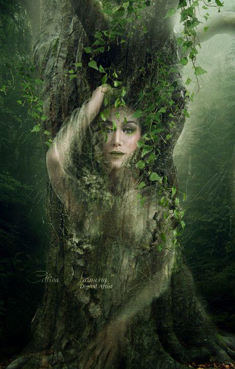 The Entwife - Celtica Harmony