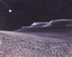 Desert Solitude