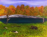 Original oil painting - Black Bear