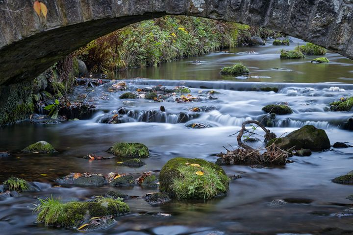 Under the wee bridge - Jeremy Lavender Photography