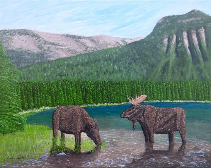 Moose at Akamina Lake - Brian Sloan Paintings - Il Pennello d'Oro Art