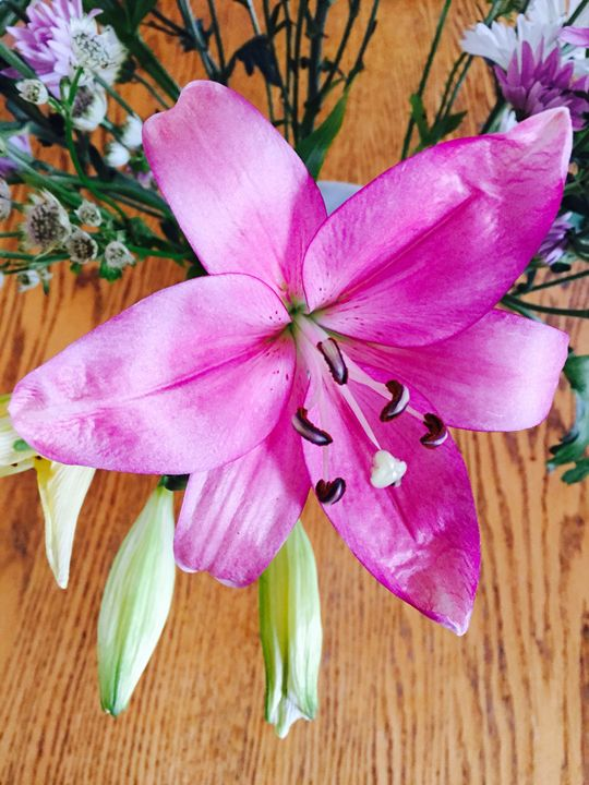 Pink Lily Bouquet - Brogan Fine Art