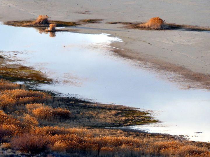 Great Salt Lake shoreline - Brian Shaw