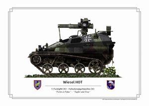 Wiesel HOT