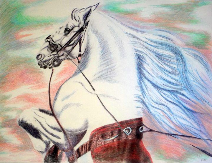 Lipizanner Horse # 1 - www.Artpal.com/alphacortius