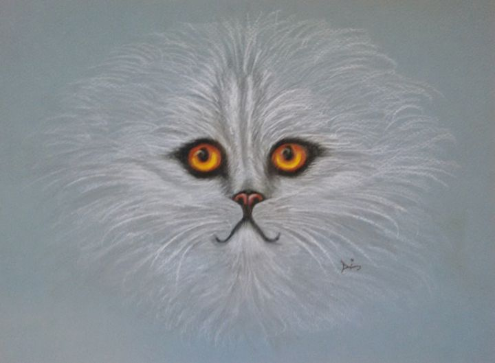 cat persian - dianestudio